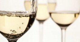 Weißweinsorten